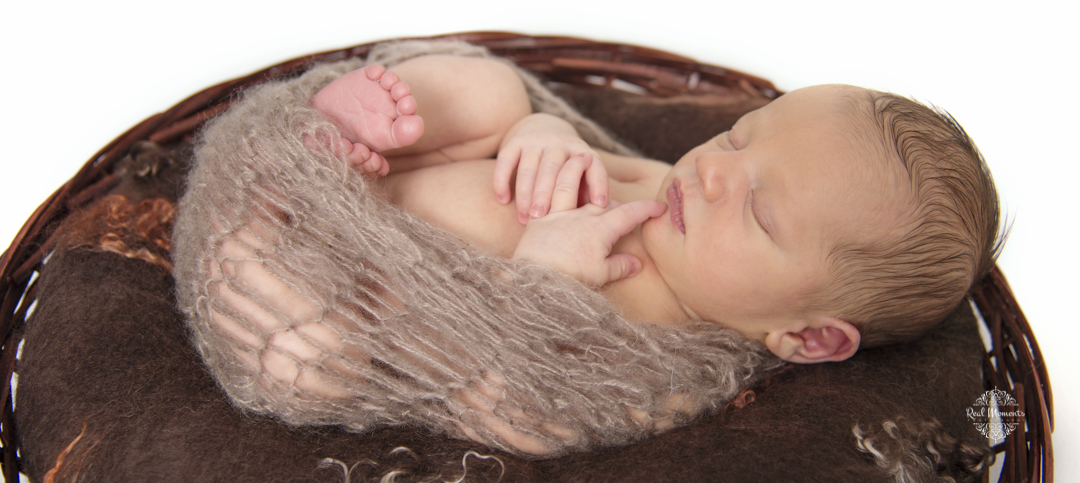 family photographer Adelaide - newborn portrait of a baby in a basket