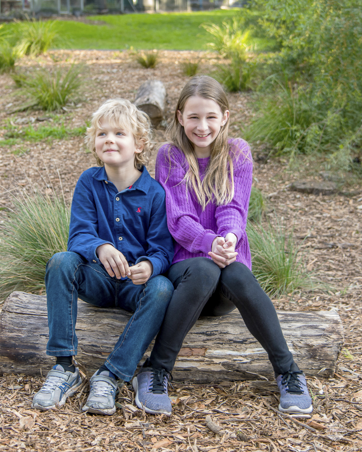 Adelaide family photography: family portrait of siblings sitting on a tree trunk